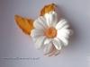 Romashka_orange