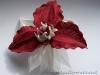 orhideya_len