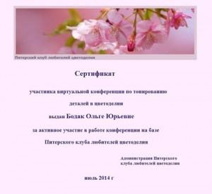 Сертификат по тонированию Ольги Бодак