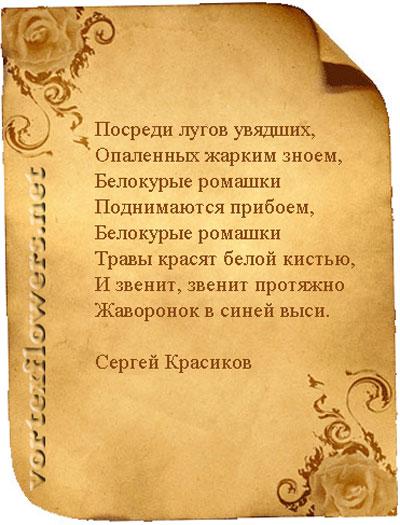 Стихи о ромашке