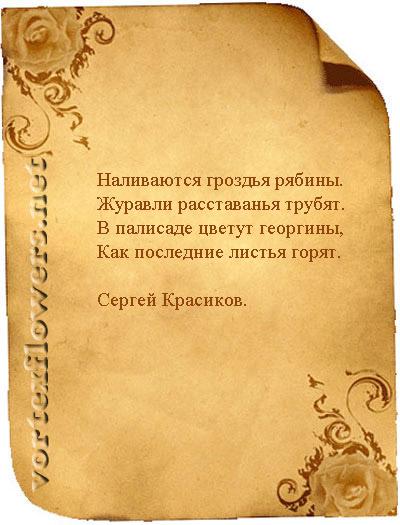 Стихи о георгинах