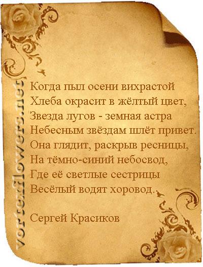 стихи об астрах