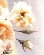 Маленькие бутоны для розы в японской технике цветоделия. Часть 1