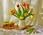 Дарите тюльпаны!