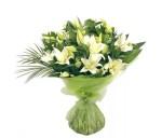 Нежные и прекрасные лилии