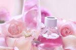 Какой парфюм выбрать в подарок